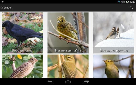 Птицы Украины screenshot 3