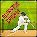 Blokstok Cricket APK