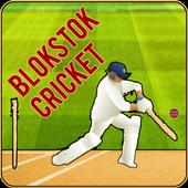Blokstok Cricket icon