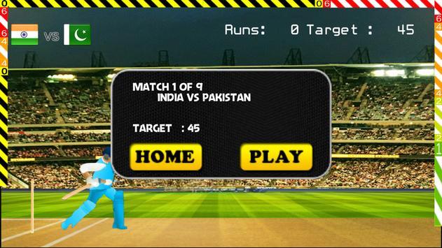 Blokstok Cricket screenshot 3