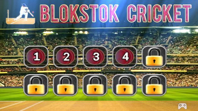 Blokstok Cricket screenshot 7