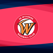SK Wyverns TV icon
