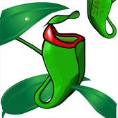 Nepy icon
