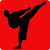 Learn Karate icon