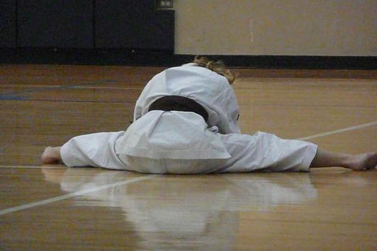 Learn Karate screenshot 3