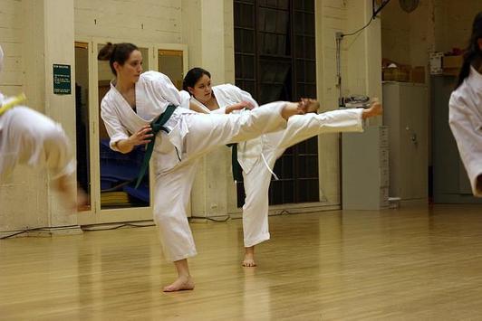 Learn Karate screenshot 12