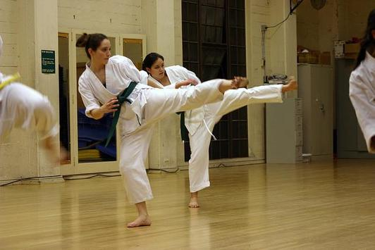 Learn Karate screenshot 1