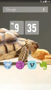 Tortoise And Tiny Panc Live WP poster