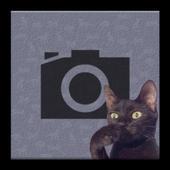 Cat Bomb Camera icon