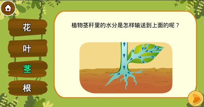 豆豆玛琅-植物篇 screenshot 7