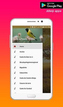 Cantos De Pássaros Silvestres Offline poster