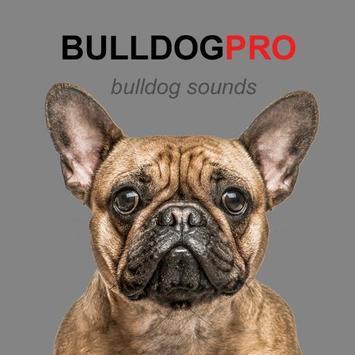 Bulldog Sounds & Dog Barks poster