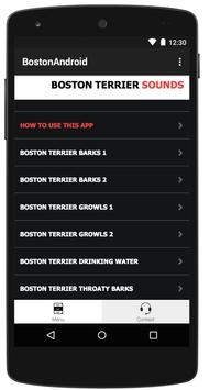 Boston Terrier Dog Sounds apk screenshot