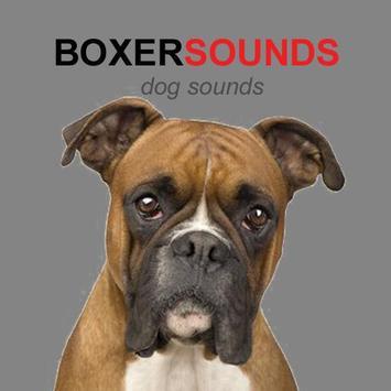 Boxer Dog Sounds & Dog Barking poster