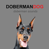 Doberman Dog Sounds and Barks icon