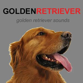 Golden Retriever Dog Sounds poster