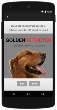 Golden Retriever Dog Sounds apk screenshot