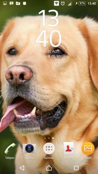 Best Dog Wallpaper screenshot 4