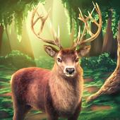 Deer Hunt Sniper Shooting 3D icon