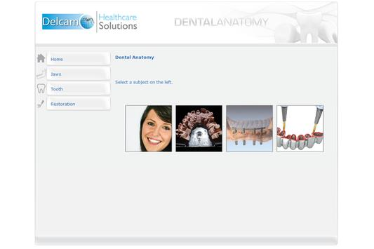 Dental Anatomy screenshot 1