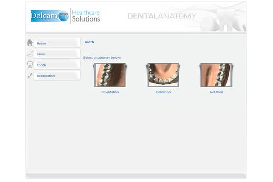 Dental Anatomy screenshot 2