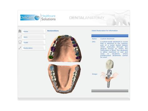 Dental Anatomy screenshot 3