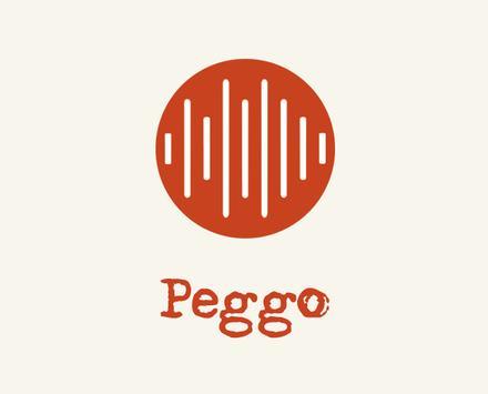 New Peggo Pro poster