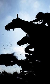 Horse Jigsaw Puzzles Game apk screenshot