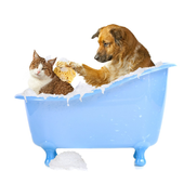 Love To Pets Jigsaw Puzzles Game icon