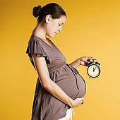 Беременность Роды icon