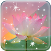Lotus Live Wallpaper new icon