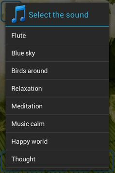 Relaxing Spa Music تصوير الشاشة 3