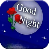 Good Night GIF Collection icon