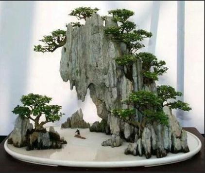 Design Bonsai Ideal screenshot 14
