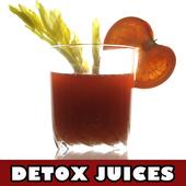 Detox Juice Recipes icon