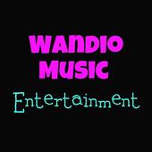 Wandio Music Entertainment icon