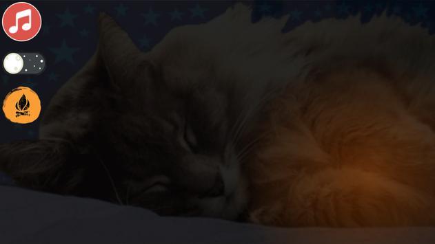 Pet Cat Tom screenshot 2