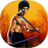 Amazing Bruce Lee Wallpapers (HD) icon