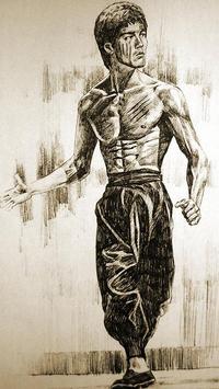 Amazing Bruce Lee Wallpapers (HD) screenshot 2