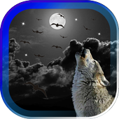 Wolves Night HD live wallpaper icon