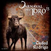 Carnaval del Toro 2015 icon