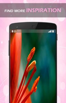 Flower Petals 3D Wallpaper HD apk screenshot