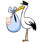 Pregnancy issues Guideance icon