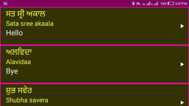 Learn Punjabi From English screenshot 12