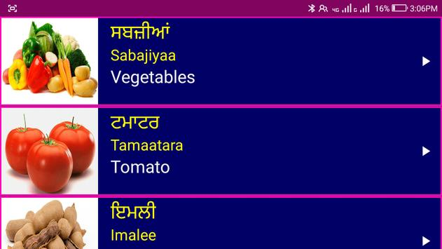 Learn Punjabi From English screenshot 21