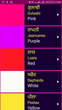 Learn Punjabi From English screenshot 6
