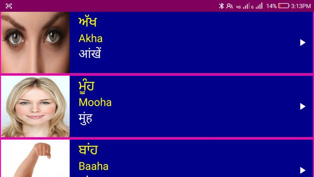 Learn Punjabi From Hindi screenshot 16