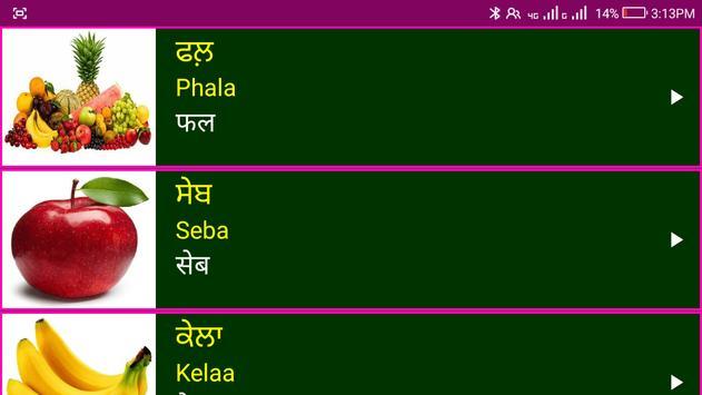 पंजाबी सीखो - Learn Spoken Punjabi From Hindi screenshot 19