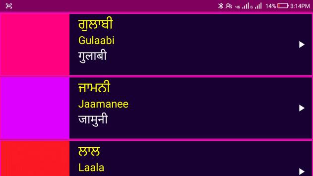 Learn Punjabi From Hindi screenshot 23