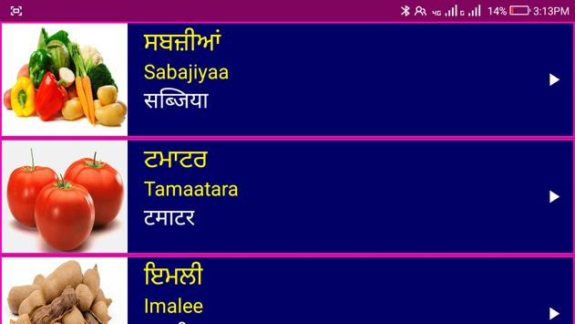 पंजाबी सीखो - Learn Spoken Punjabi From Hindi screenshot 21